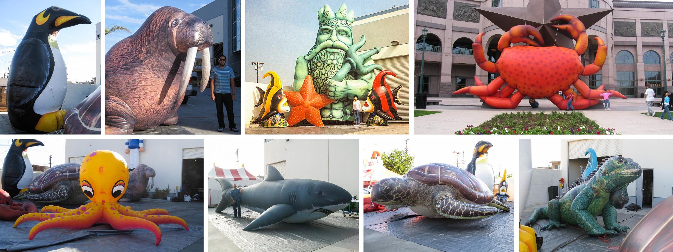 Oceanic-inflatables-collage