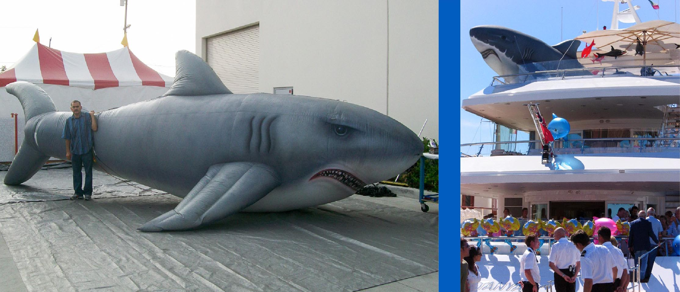 inflatable-hand-painted-shark
